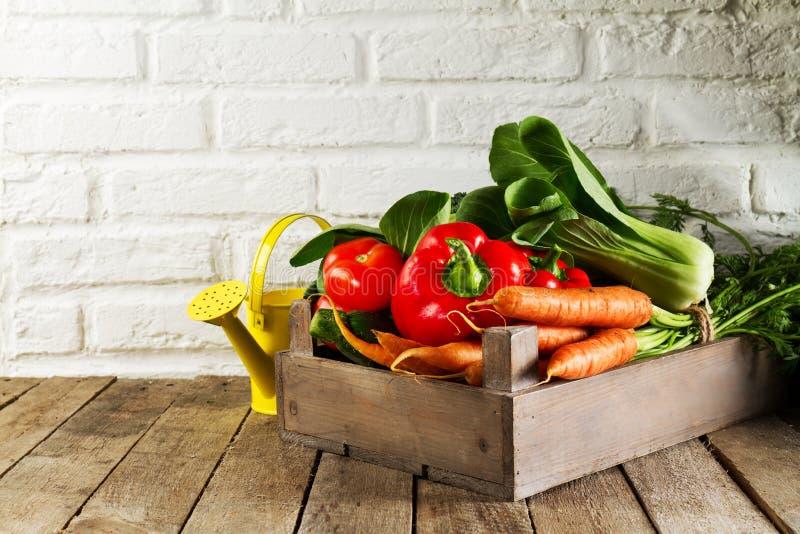 Fond coloré végétal de nourriture Légumes frais savoureux dans la boîte en bois sur le Tableau en bois Fond de cuisine image stock