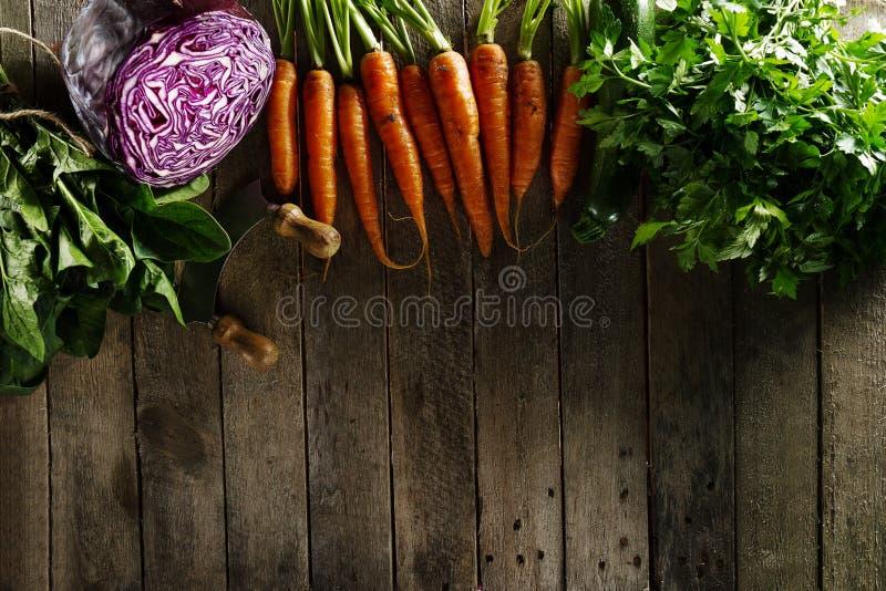 Fond coloré végétal de nourriture Légumes frais savoureux sur l'OE photos libres de droits