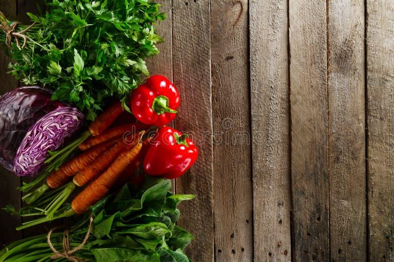 Fond coloré végétal de nourriture Légumes frais savoureux sur l'OE images libres de droits