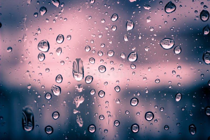 Fond condensat rouge-rose de l'eau de fenêtre images stock