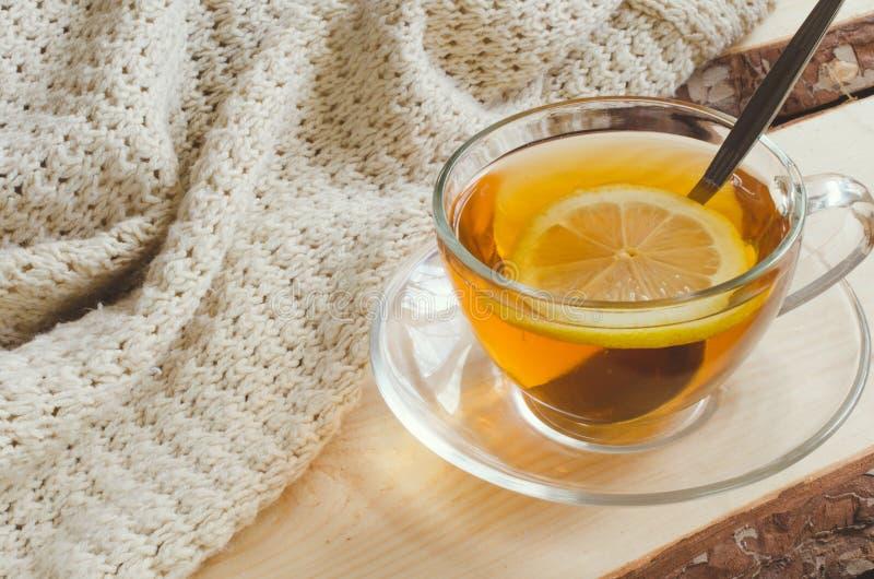 Fond confortable et mou d'hiver La tasse de thé et chauffent le chandail tricoté image stock