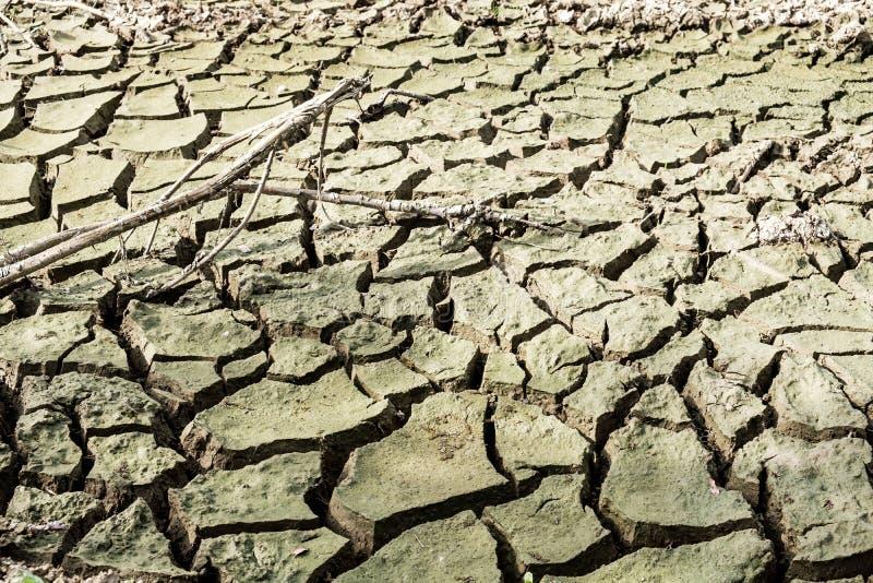 Fond criqué de texture de la terre Fissures de désert de sel, sol sec A photo libre de droits