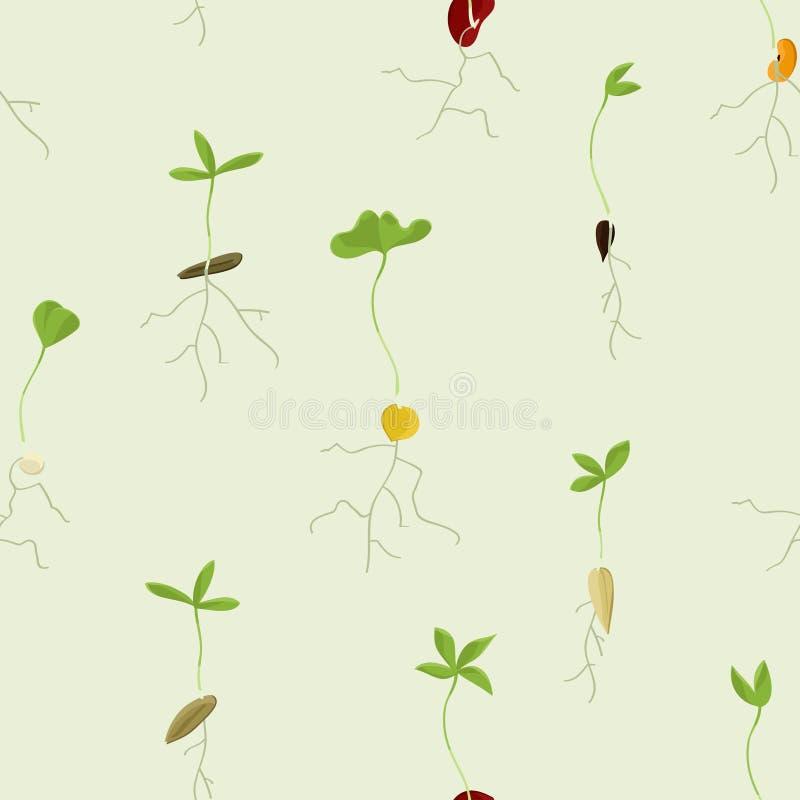 Fond croissant de graines illustration libre de droits