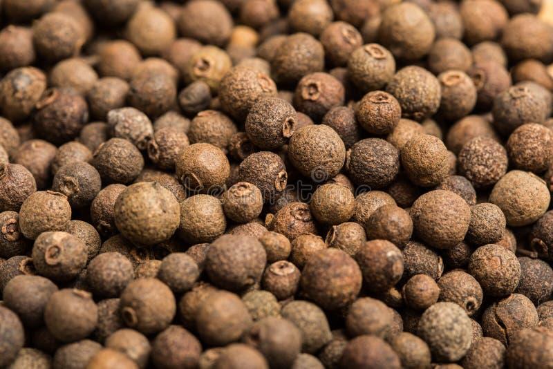 Fond détaillé de grains de poivre photos stock