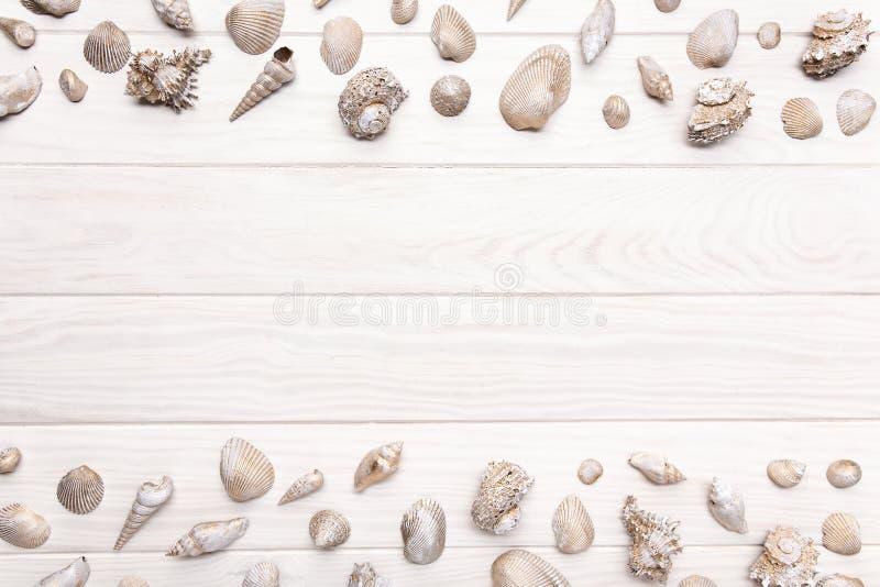 Fond d'été avec la table en bois blanche avec beaucoup coquillage Copiez l'espace photo libre de droits
