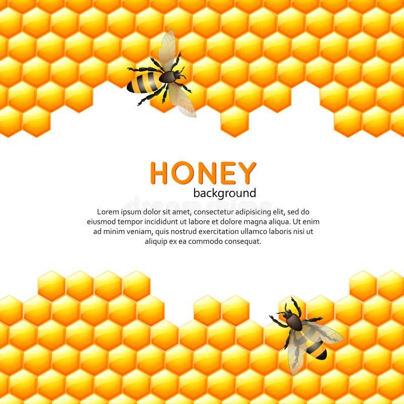 Fond d'abeille de miel illustration libre de droits