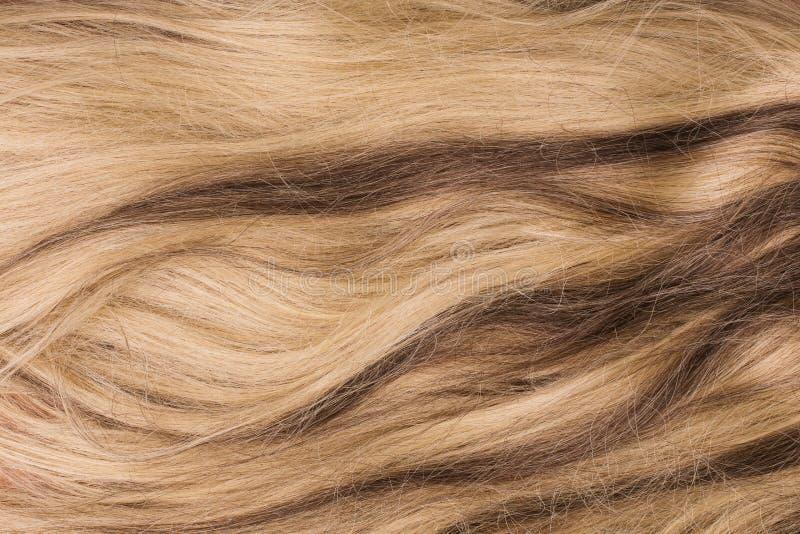 Fond d'abrégé sur texture de cheveux de point culminant image stock