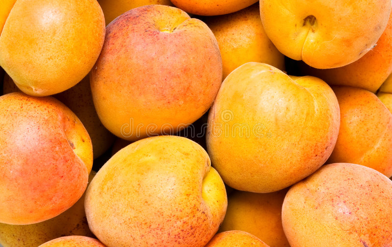 Fond d'abricot de plan rapproché images stock