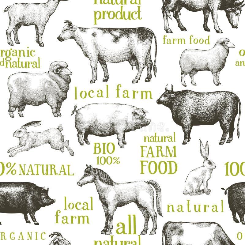Fond d'animaux de ferme de vecteur Illustration de cru Animaux tirés par la main Modèle sans couture de ferme images libres de droits
