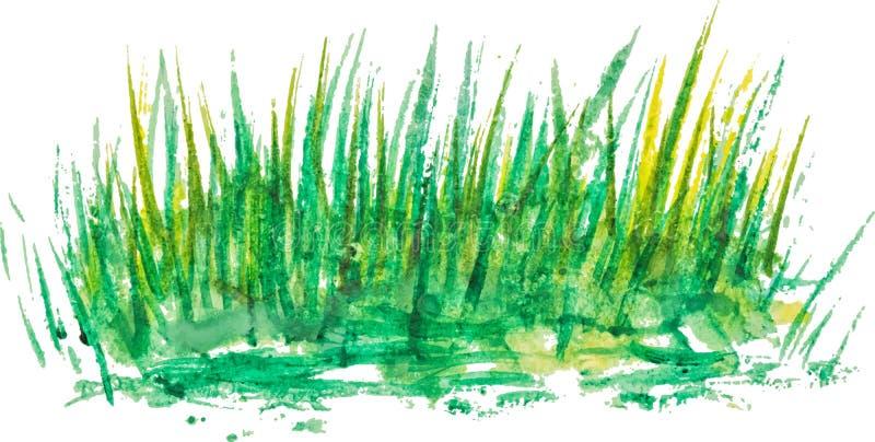 Fond d'aquarelle avec l'herbe linéaire de vintage illustration stock