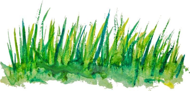 Fond d'aquarelle avec le modèle linéaire d'herbe de vintage illustration stock