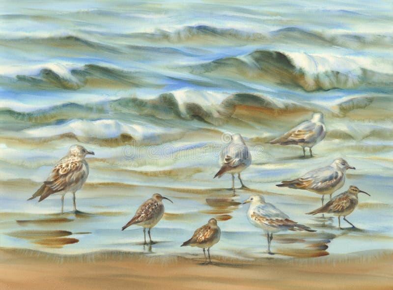 Fond d'aquarelle d'oiseaux de mer image stock