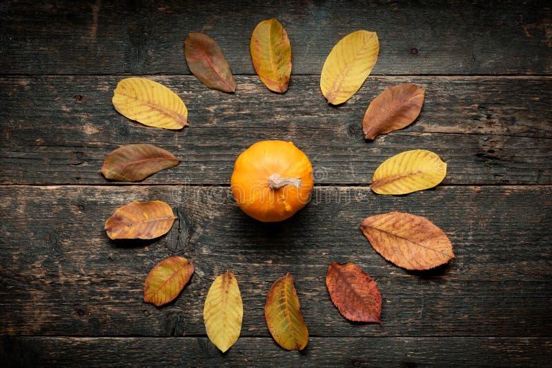 Fond d'automne Action de grâces heureuse Potiron et feuilles d'automne sur le fond en bois foncé photo libre de droits
