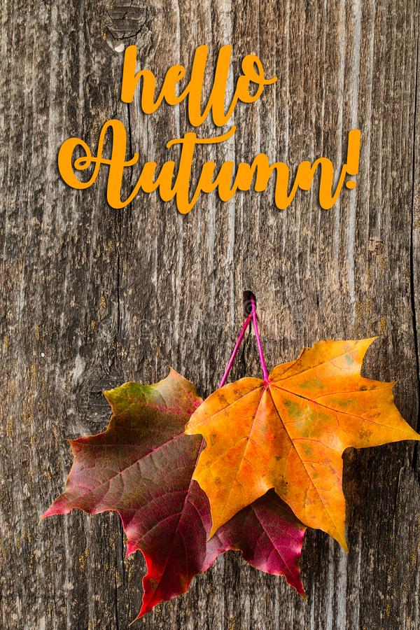 Fond d'automne avec bonjour des lettres d'automne et des feuilles d'automne photos libres de droits