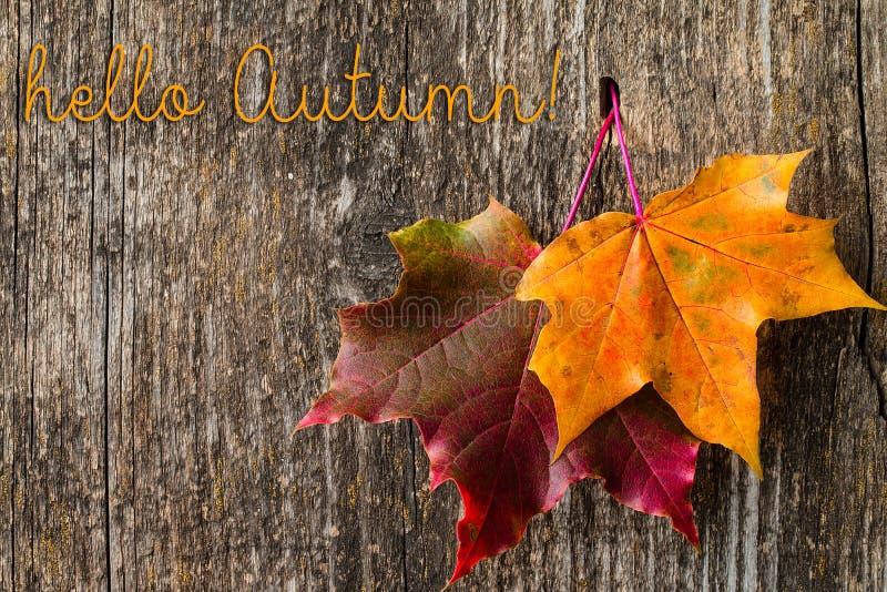 Fond d'automne avec bonjour des lettres d'automne et des feuilles d'automne images stock
