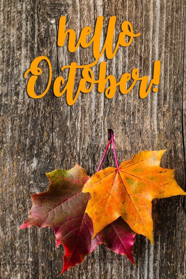 Fond d'automne avec BONJOUR des lettres d'OCTOBRE et des feuilles d'automne photos libres de droits