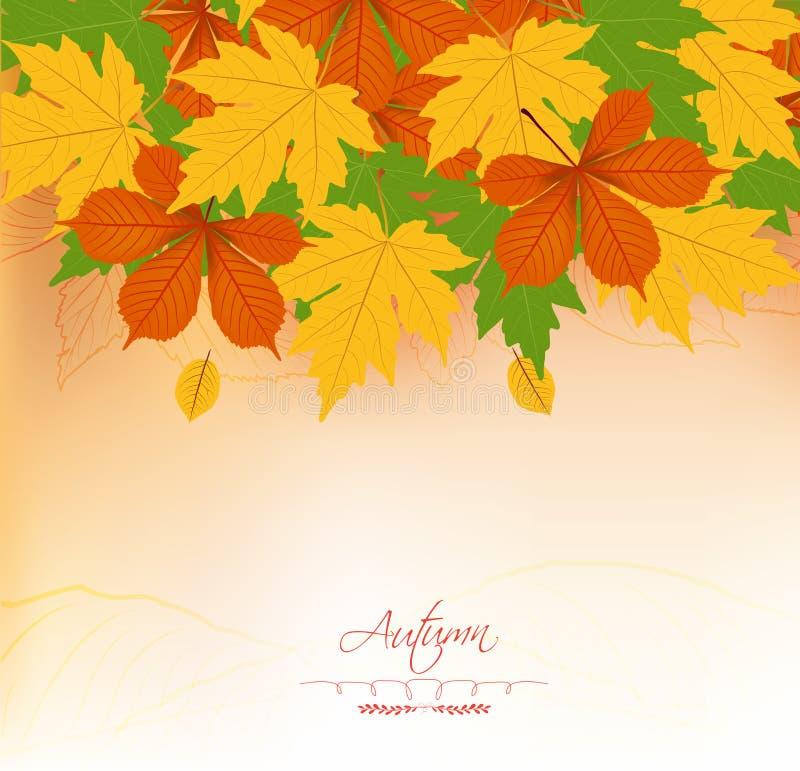 Fond d'automne avec des feuilles De nouveau à l'école illustration libre de droits