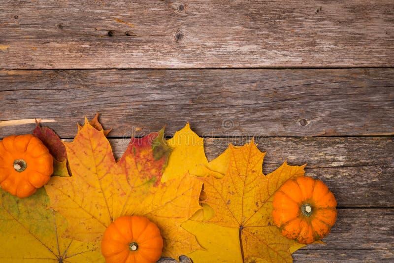 Fond d'automne avec des feuilles et de mini potirons sur la table en bois rustique Copiez l'espace Concept d'automne image libre de droits