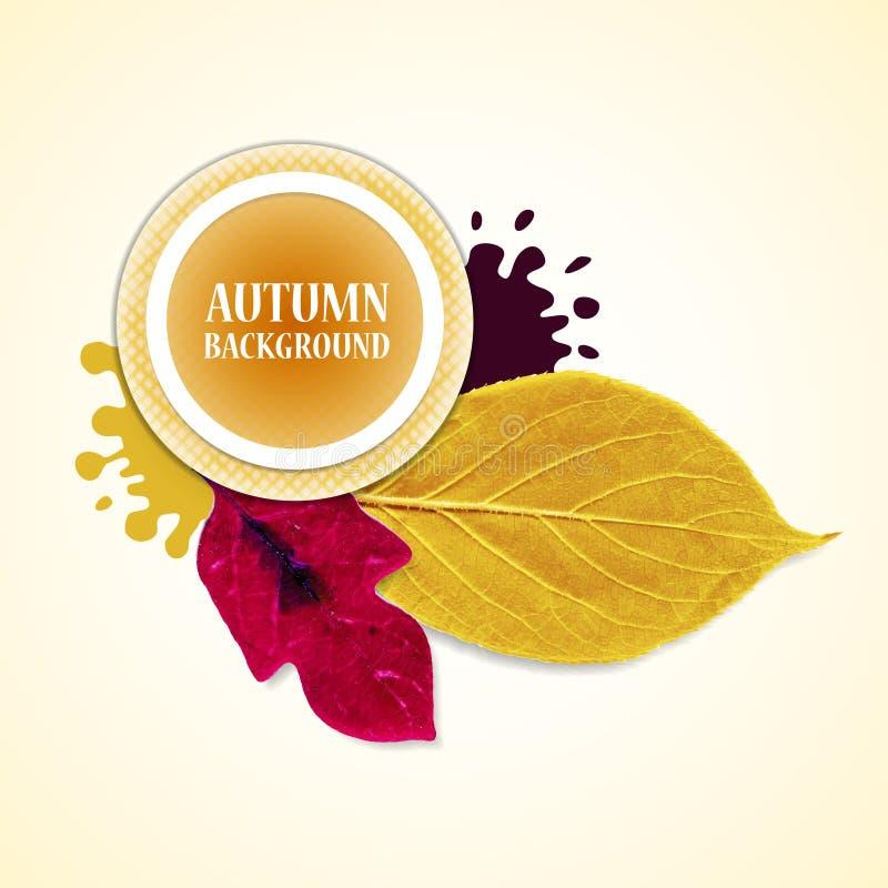 Fond d'automne avec des feuilles et des taches Redviolet et jaune Illustration de vecteur illustration stock