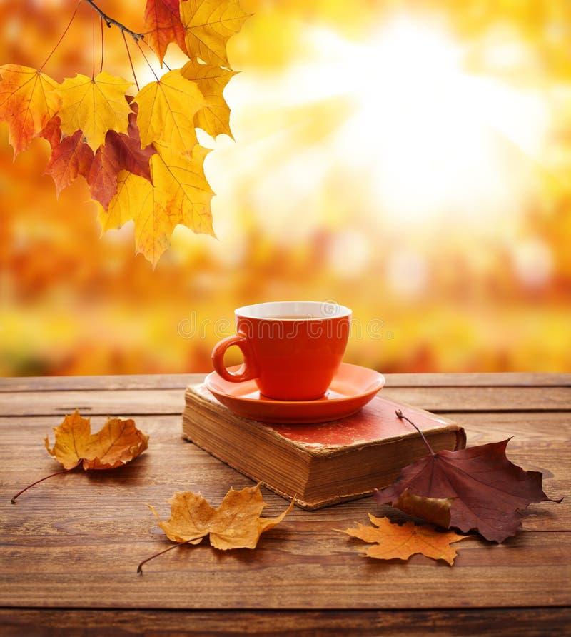 Fond d'automne Feuilles, livre et tasse d'automne de thé sur la table en bois en parc photos libres de droits