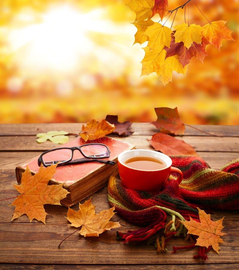 Fond d'automne Feuilles, livre et tasse d'automne de thé sur la table en bois en parc photo stock