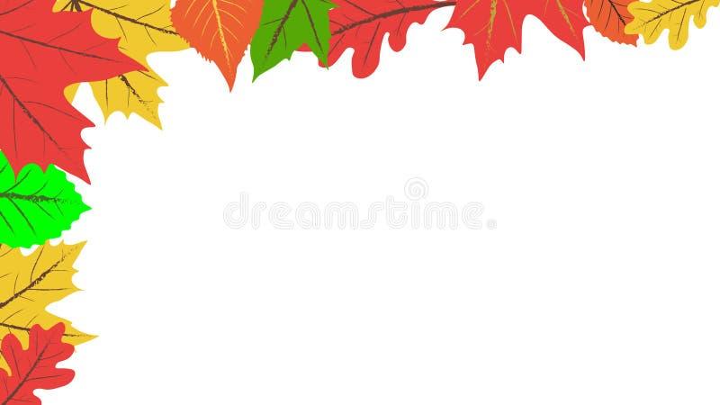Fond d'automne lames color?es de fond blanches image stock