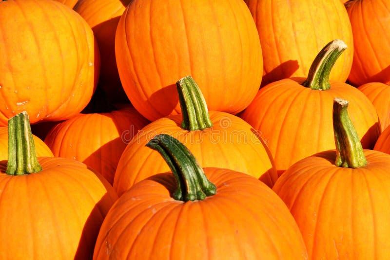 Download Fond D'automne Potirons Colorés Photo stock - Image du couleur, halloween: 77150038