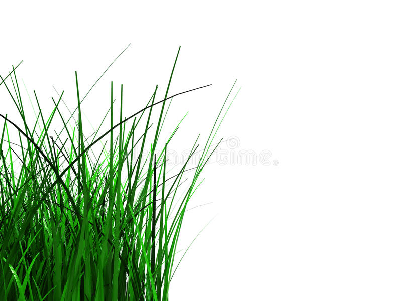 Fond d'herbe verte illustration stock
