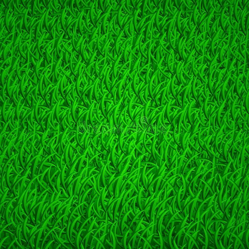 Fond d'herbe verte illustration libre de droits