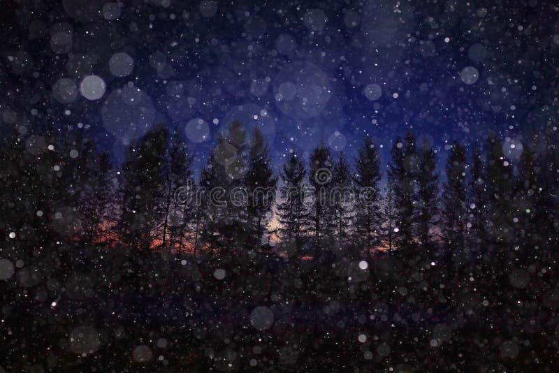 Fond d'hiver de nuit en nature images libres de droits
