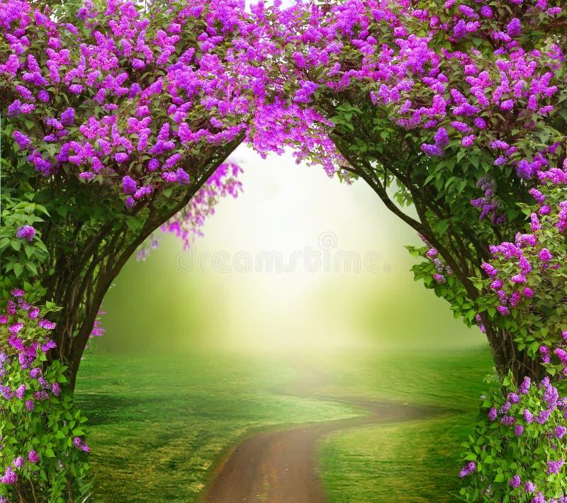 Fond d'imagination Forêt magique avec la route illustration de vecteur
