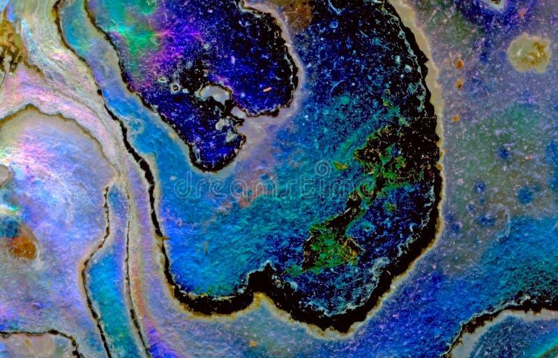 Fond d'interpréteur de commandes interactif d'ormeau images stock