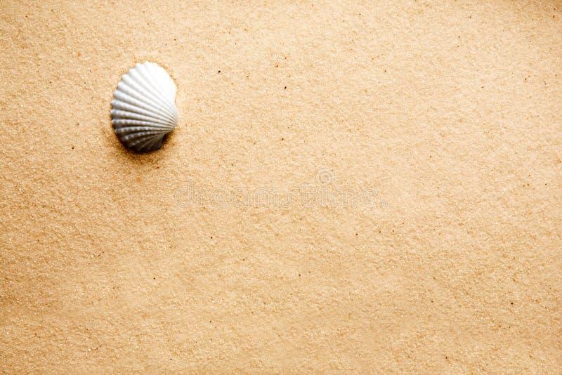 Fond d'interpréteur de commandes interactif de sable image libre de droits