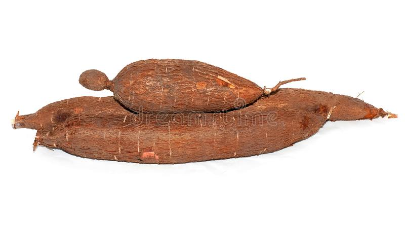 Fond d'isolement par racine de manioc photographie stock