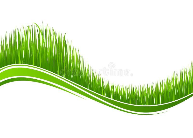 Fond d'onde d'herbe illustration stock