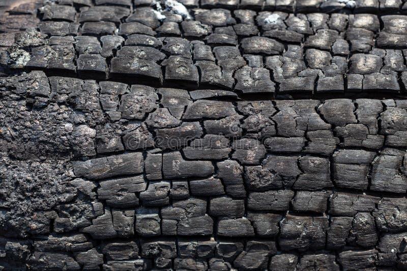 Fond d'une surface noire du conseil en bois carbonisé brûlé images stock
