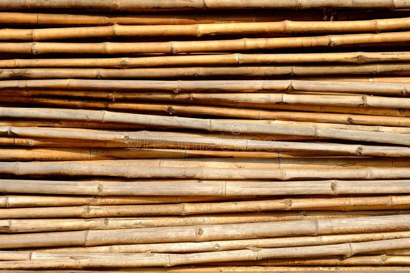 Fond de bambous images stock