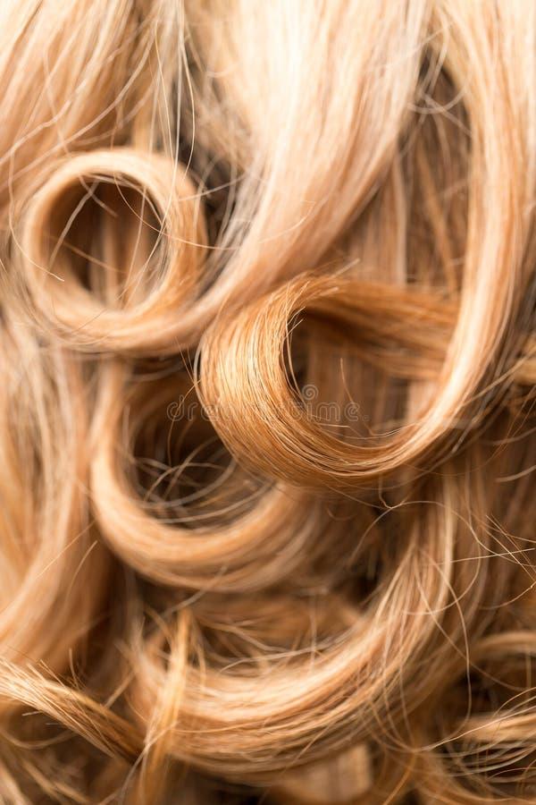 Fond de beaux cheveux du ` s de femme image libre de droits