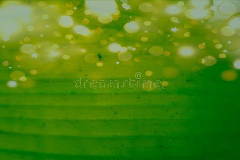 Fond de belle couleur de résumé papier peint jaunes et verts de modèle de graphiques de feuilles d'arbre et image libre de droits