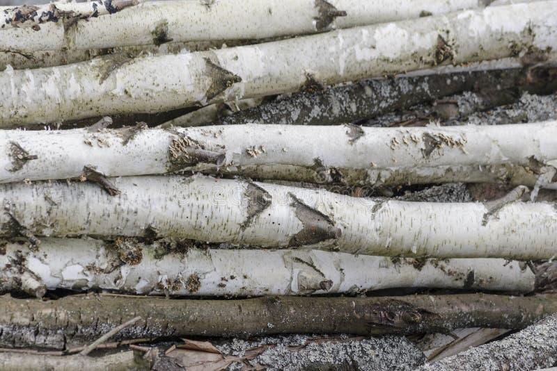 Fond de bois de construction en bois de piles La pile du bois note le stockage Les scies ont coupé les rondins en bois images libres de droits
