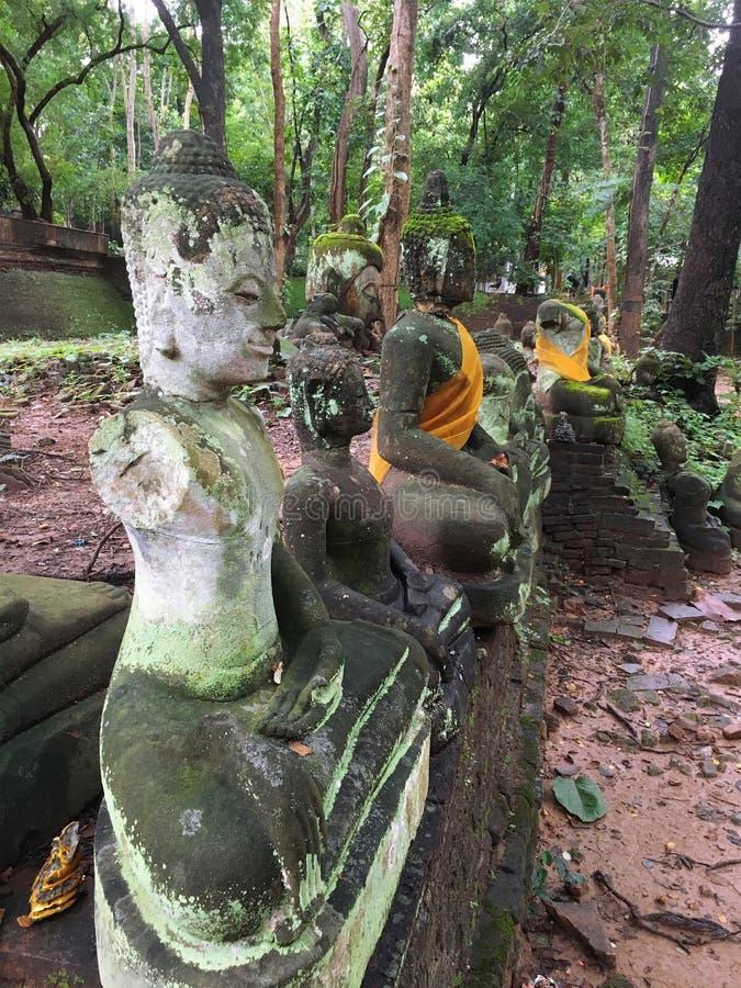 Fond de Bouddha, Bouddha, chef de Bouddha, bouddhiste, temple, Chiangmai, Thaïlande, Asie photographie stock