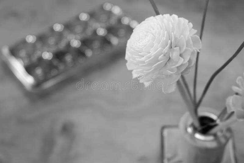 Fond de bouteille de parfum noir et blanc photo stock