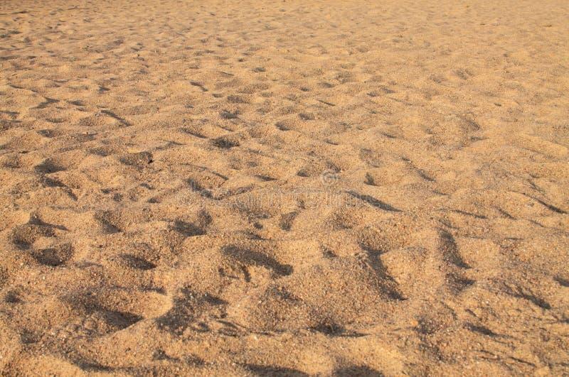Fond de Brown, plan rapproché naturel de modèle de sable images libres de droits