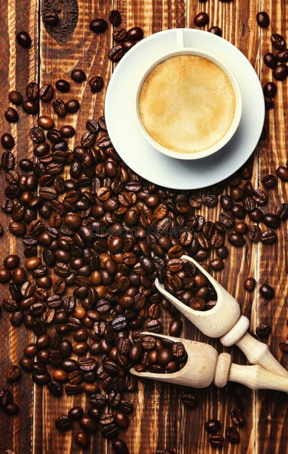 Fond de café avec le crema et des grains de café dans les lames photographie stock libre de droits