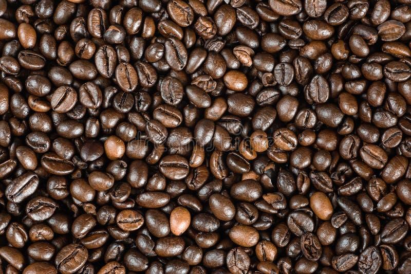 Fond de café, macro photo Grains de caf? r?tis photos libres de droits