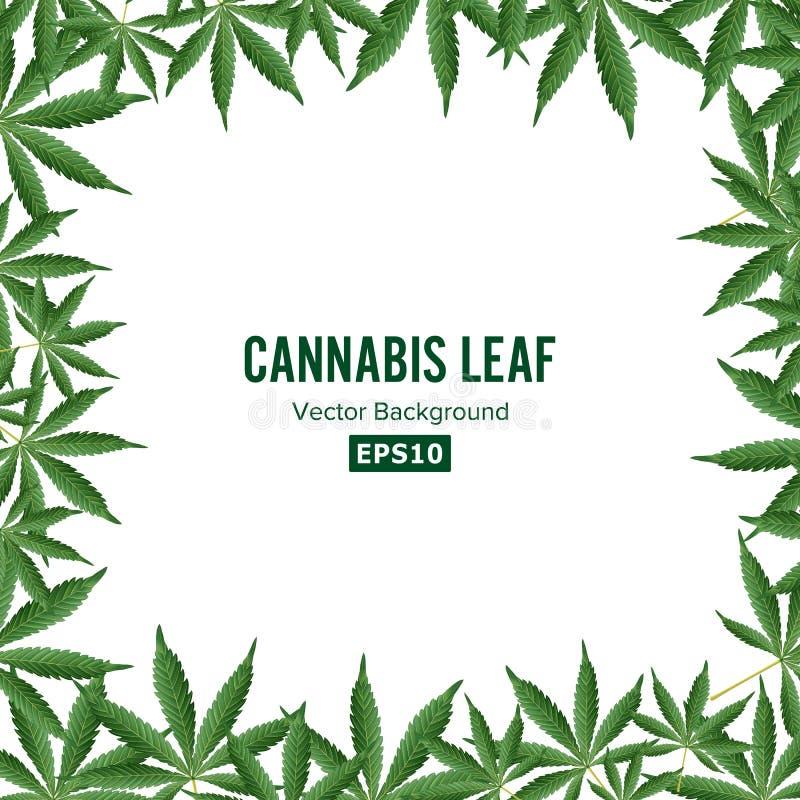 Fond de cannabis Cadre de marijuana de vecteur lame verte illustration libre de droits