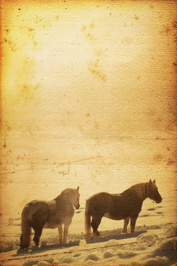 Fond de cheval illustration libre de droits