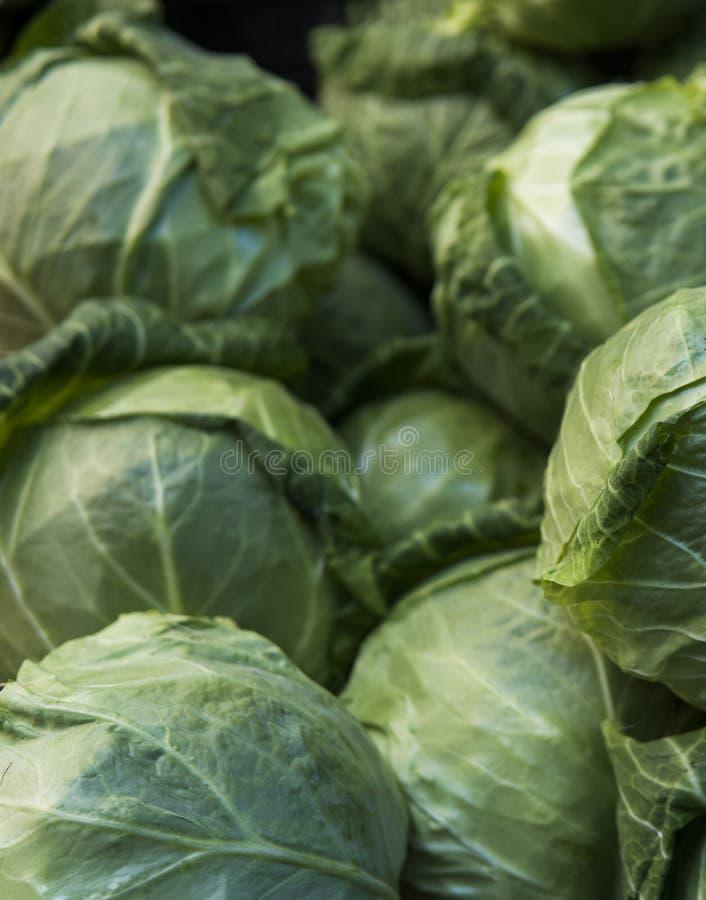 Fond de chou Chou frais de champ de ferme Fermez-vous vers le haut de la macro vue des choux communs Concept végétarien de nourri photo stock