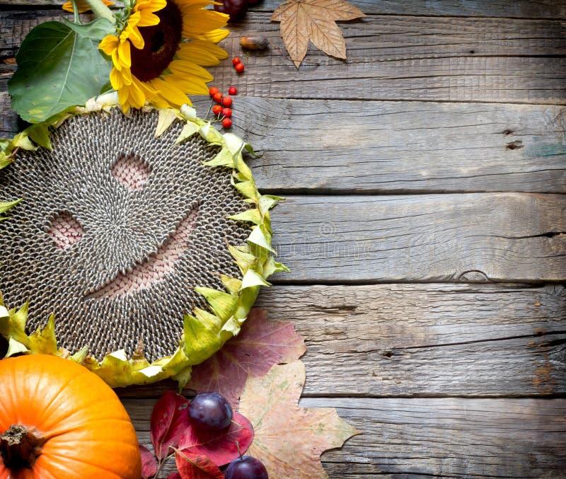 Fond de chute d'automne de thanksgiving de récolte avec les fruits et légumes heureux de tournesol image libre de droits