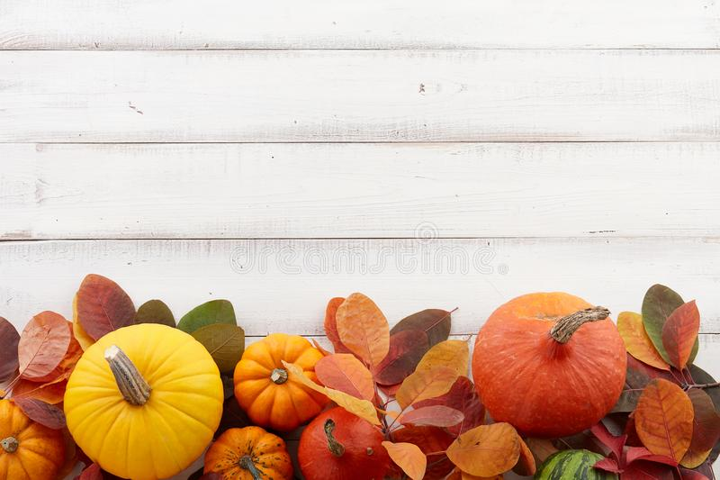 Fond de chute des potirons et des feuilles d'automne colorés photo stock